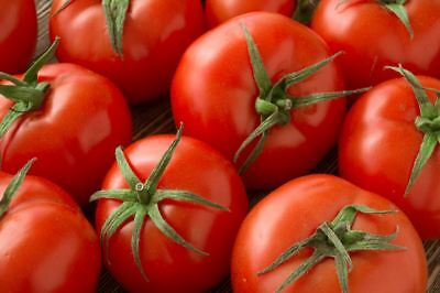 """Tomato """"Betalux"""" - small variety - 220 seeds"""
