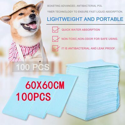 100X Large Puppy Training Trainer Pads Toilet Pee Wee Mats Dog Cat 60X60Cm Pet