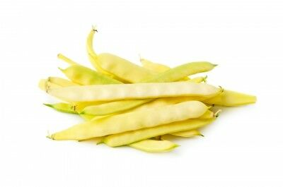 "Yellow French bean ""Titania"" - early variety - 90 seeds"