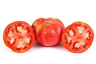 """Giant tomato """"Brutus"""" - fruit weighing up to  - 2 kg - seeds"""