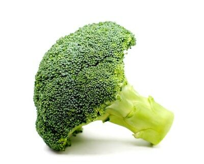 """Broccoli """"Sebastian"""" - early variety for spring and autumn - 600 seeds"""