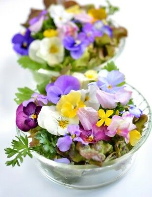 Variety mix of plants with edible flowers  - seeds