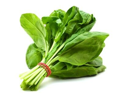 "BIO - Spinach ""Geant d'hiver"" - certified organic  - 800 seeds"