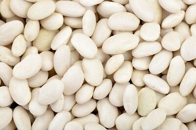 Dwarf French Bean Igolomska  - Phaseolus vulgaris - 100 seeds