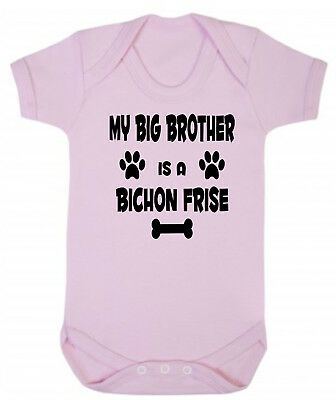 My Big Brother (or Sister) Is A Bichon Frise Blue or Pink Cotton Baby Bodysuit