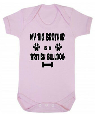 My Big Brother (or Sister) Is A British Bulldog Blue Pink Cotton Baby Bodysuit