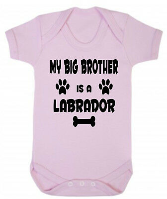 My Big Brother (or Sister) Is A Labrador Blue or Pink Cotton Baby Bodysuit