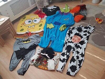 Huge Job lot Fancy Dress Costumes bundle & Amy Wigs London collection only