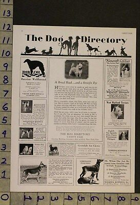 1929  Dog Canine Cairn Terrier Toy Breed Todo Wizard Of Oz Photo Ad Ru15
