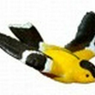 Gold Finch Window Magnet CC52006 New