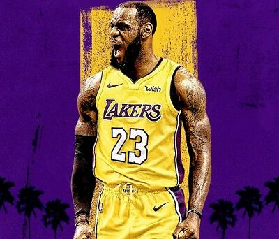 buy popular 41c69 6ee6d LEBRON JAMES LOS Angeles Lakers Stitched Jersey pre order ...