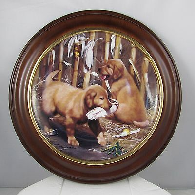 Franklin Limited Edition Golden Retriever Collector Plate with Wood Frame