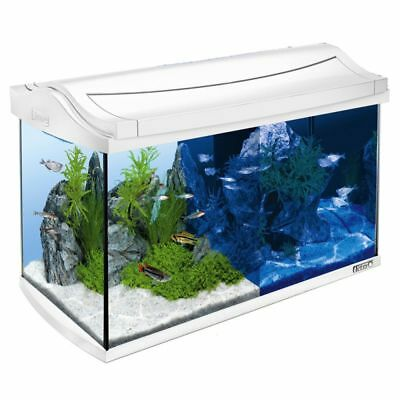 Aquarium Complete Set White 60 L LEDs Integrated Day & Night Lighting Filter