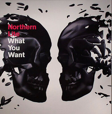 ECHTER ELECTRO - MARTIN BUTTRICH RMX - Northern Lite – What You Want - 1stDeca