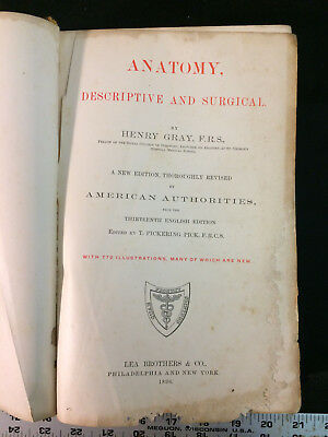 Anatomy Descriptive And Surgical By Henry Gray 1896 3499 Picclick