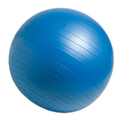 (blue) - CanDo Non-Slip Super Thick Inflatable Exercise Ball. Huge Saving