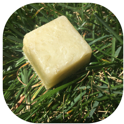 All-In-One Biodegradable Camp Soap - for Hair, Body, Clothes, Dishes & Travel!