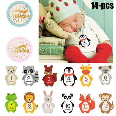 14 Sheets Baby Month Stickers Numbers Milestone Belly Photo Milestone Stickers