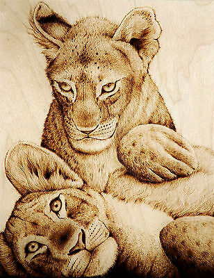 Lion & Tiger Cubs Playing Original Cat/animal Art-Drawing With Fire/woodburning