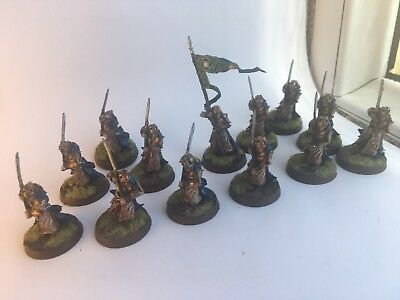 LOTR Warhammer well painted Lorien elf warriors (x12) with Standard Bearer