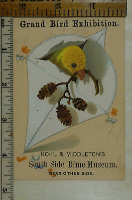 Trade Card, Bird Exhibition, Chicago, Kohl and Middleton's...Dime Museum