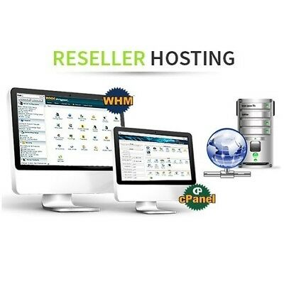 Reseller Alpha Cloud Web Hosting SSD with Softaculous For 1 Year!