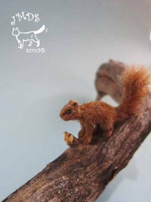 OOAK Dollhouse Miniature Handmade squirrel, Realistic cat 1:12 by JMDS