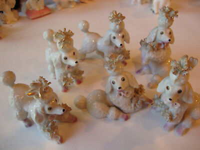 6 Vintage Poodle Figurines Matching Set Spaghetti Tufts Different Poses Japan