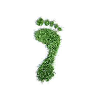 Grow Your Own Eco Footprint Novelty Christmas Secret Santa Gift Stocking Filler