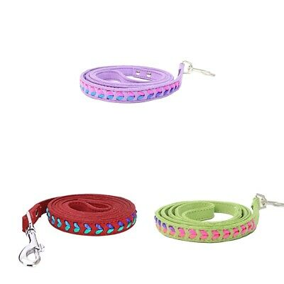 Colorful Weave Dog Pet Lead Leash Training Obedience Walking Tracking Rope