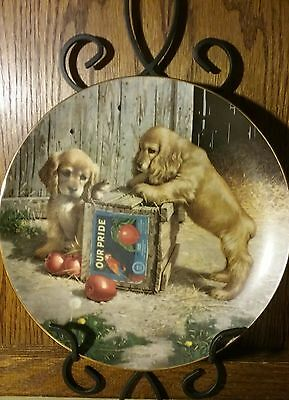 Puppy Playtime COCKER SPANIEL DOG Jim Lamb, Double Take PLATE With COA MINT