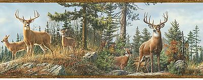Deer on Top of Mountain Brown Wood Edge Easy Walls Wallpaper Border HTM48463B