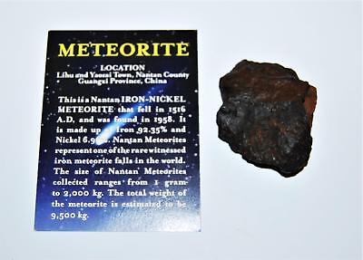 NANTAN IRON NICKEL METEORITE -Genuine-79.9 gram + Info Card & COA#13974 6o