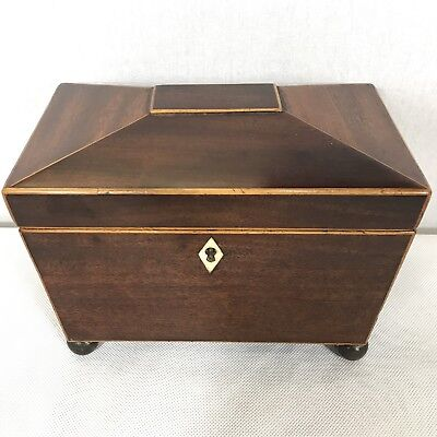 Antique Regency Mahogany Satinwood Inlaid Brass Mounted Two Section Tea Caddy