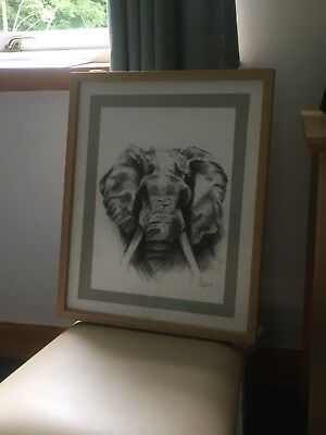 One off, Original Charcoal Framed Elephant Drawing by the Artist Laura Gourlay.