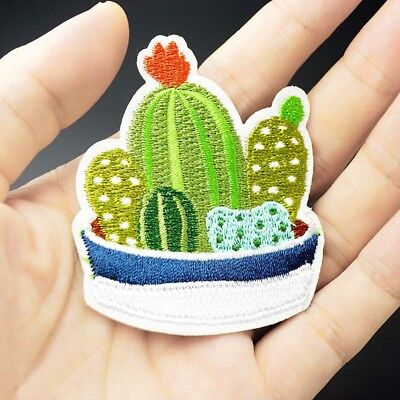 CACTUS PLANT APPLIQUE MCP-593 EMBROIDERED POTTED CACTUS PATCH