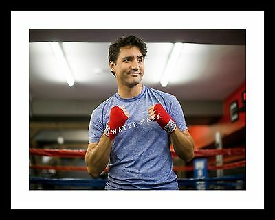 Justin Trudeau 11X14 Photo Print Boxing Prime Minister CANADA Canadian Boxer