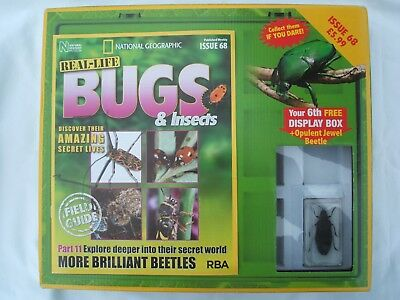 National Geographic Real Life Bugs & Insects Issue 68 With Display Box