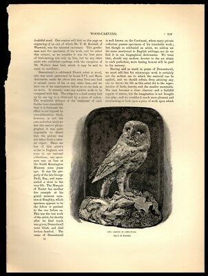 Owl Carved in Lime-Wood by T H Kendall—Antique Vtg Art Print 9x12.5""
