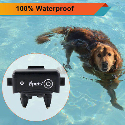 Ipets Rechargeable Waterproof Extra Dog Receiver Collar For E-Collar PET619S