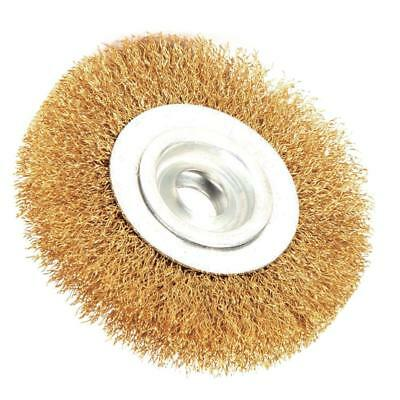 Robtec 6 in. x 1/2 in. Arbor Crimped Brass Coated Steel Wire Wheel Brush