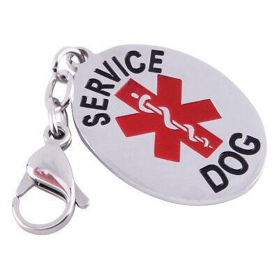 Stainless Steel Medical Alert Service Pet ID Dog Tag Collar Free Ship Keychain