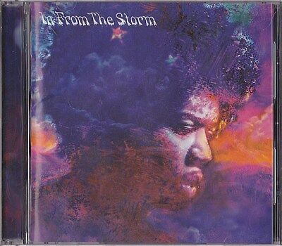 V.A. In From The Storm - The Music Of Jimi Hendrix Japan CD 1995 BVCP-895