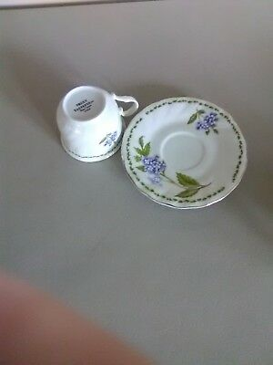 Truly Tasteful Fine China Cup and Saucer - Blue Flowers
