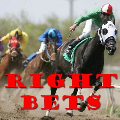 RightBets - Horse Racing Statistics Software