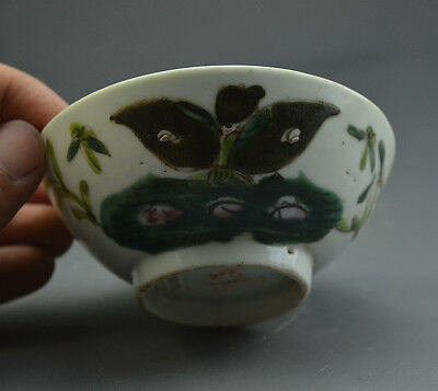 Fine Chinese Ancient Famille Rose Glazed Porcelain Iris Japonica Pattern Bowl
