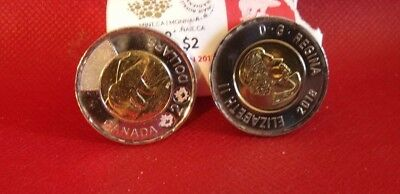 1-2018 Canada First Strike Toonie direct from RCM Special Wrap Roll.. Unc