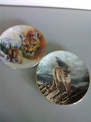 "2 Cougar Mountain Lion Plates- Mountain Majesty""& ""The Cougar"""