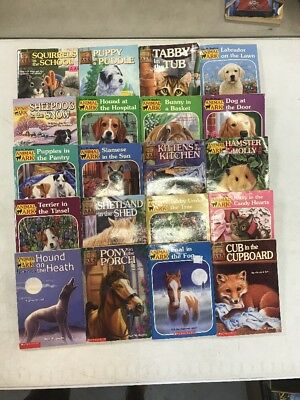 Lot Of 11 Animal Ark Puppy Place Series Children S Chapter Books