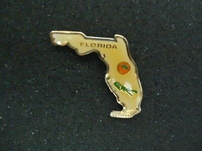 State of Florida Lapel/ Hat pin